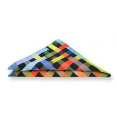 Einstecktuch Regenbogen Print